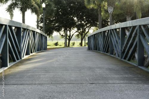 Fotografia, Obraz  Bridge To Trees