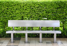 Modern Bench At Bus Stop Against Leaf Wall.