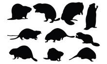 Beaver Silhouette Vector Illustration