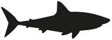 Fototapeta Fototapety na ścianę do pokoju dziecięcego - shark silhouette