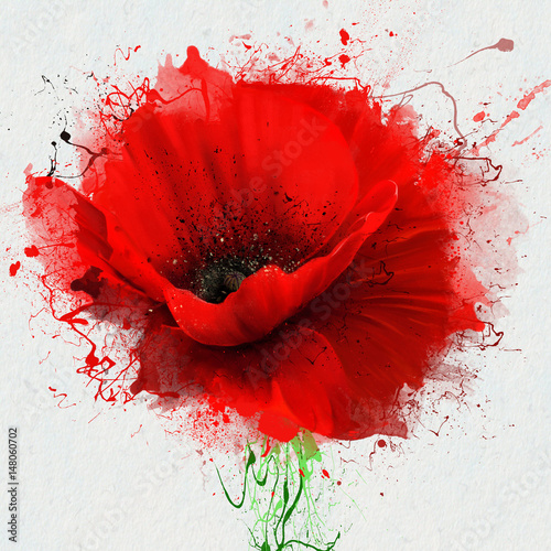 Obraz Beautiful red poppy closeup on a white background, with elements of the sketch and spray paint, as an illustration for the cover of the Notepad or notebook, or print on clothing - fototapety do salonu