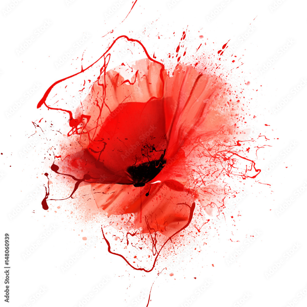 Fototapety, obrazy: red poppy closeup