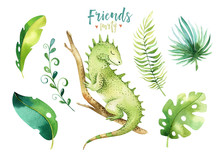 Baby Animals Nursery Isolated Illustration For Children. Watercolor Boho Tropical Drawing, Child Cute Tropic Iguana. Baby Shower
