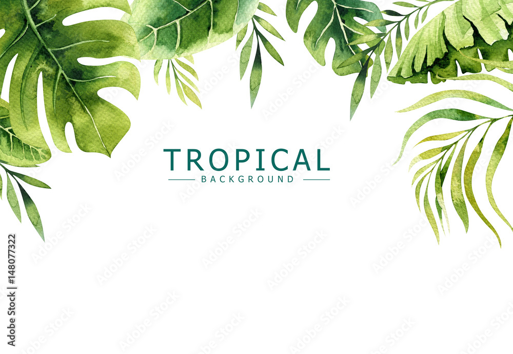 Fototapety, obrazy: Hand drawn watercolor tropical plants background. Exotic palm leaves, jungle tree, brazil tropic borany elements. Perfect for fabric design. Aloha art.