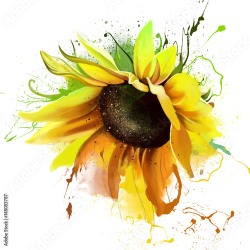 Fotografie, Obraz  Vivid sunflower closeup on a white background, splashes of watercolor paint