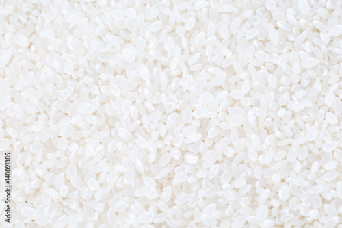 japanese rice, short grain rice