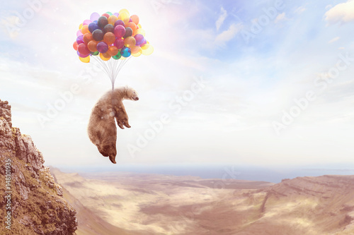 Fotografie, Obraz  Ein Bär hängt an Luftballons