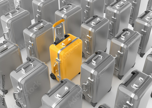 Fotografie, Obraz  Selected Luggage