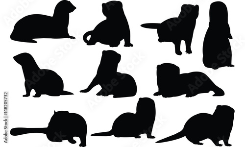 Ferret Silhouette vector illustration Fototapet