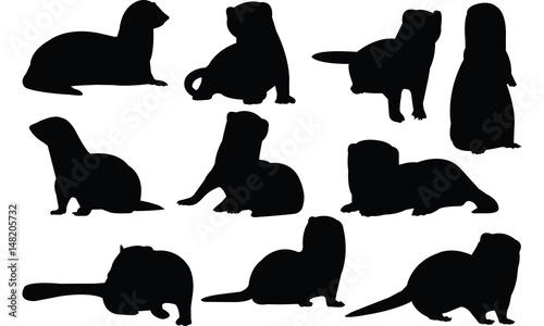 Fotografering  Ferret Silhouette vector illustration