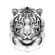 Tiger Head Full Face Symmetric...