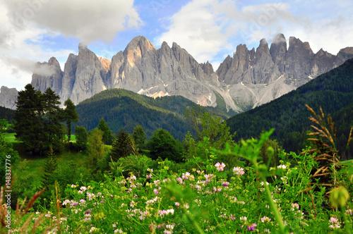 Foto op Canvas Groene Mountain landscape