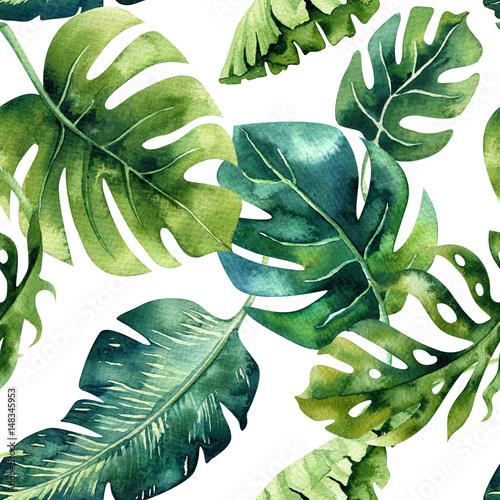 liscie-palmowe-egzotyczne-zielono-niebieskie