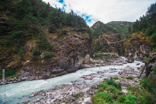 Fotobehang Olijf Pure mountain river