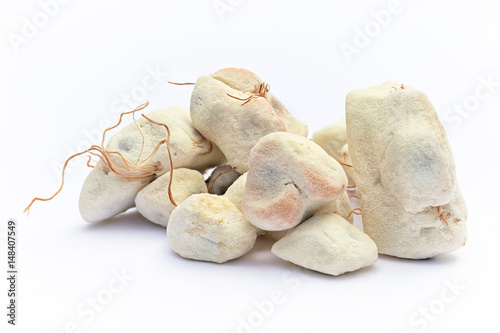 Papiers peints Baobab Baobab fruit (Adansonia digitata) on white background, pulp and powder, superfood