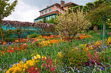 Monet`s Garden At Spring, Giverny, France.