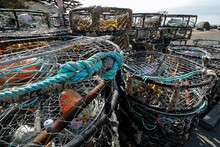 Crab Traps  On The Mendocino C...