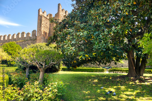 Fotografie, Obraz  park of the carrarese castle of Este , Padua province, Italy