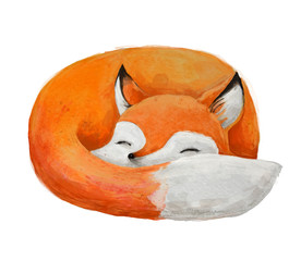 Panel Szklany Skandynawski cute watercolor fox