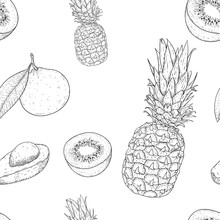 Fruits Seamless Pattern. Outline Hand Drawn Sketch