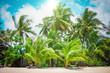 Tropical beach in koh Phangan, Thailand