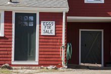 Eggs For Sale At Local Farm Free Range On Red House