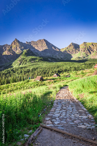 Fototapety, obrazy: Stunning mountain trail leading to a small village, Poland, Europe