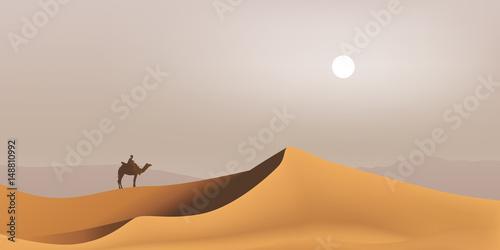 Fotografie, Obraz désert - Sahara - dune - Bédouin - dromadaire - paysage - Maghreb - tourisme