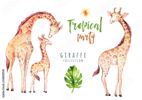 Fotografie, Obraz  Hand drawn watercolor tropical plants set and giraffe