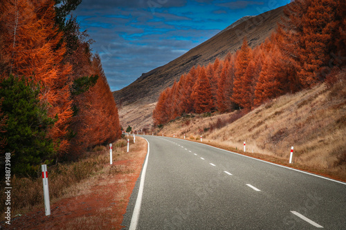 Recess Fitting Magenta Beautiful road in New Zealand Alps