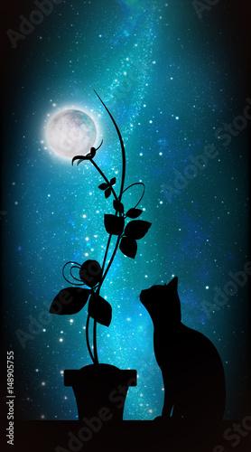 kot-z-kwiatem-na-tle-ksiezyca