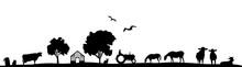 Silhouette Feld Und Tiere