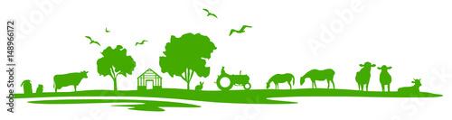 Obraz Silhouette Feld und Tiere - fototapety do salonu