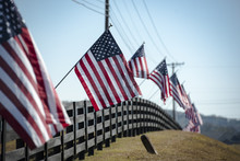 Fence With Flags