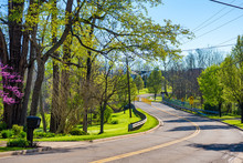 Picturesque Road Curving Through Residential Areas In Early Spring Sunlight