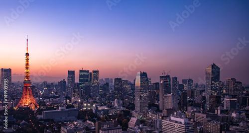 Foto op Aluminium Tokyo Tokyo cityscape at dusk