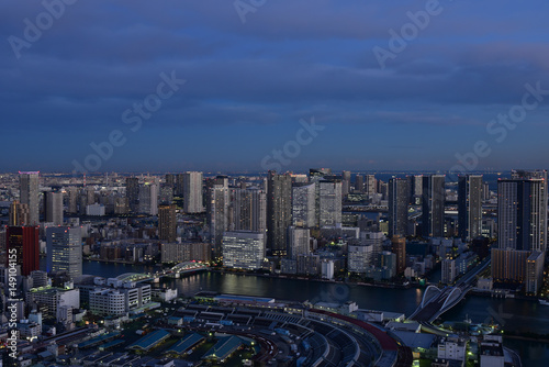 Tuinposter Tokyo cityscape with dense buildings at dusk