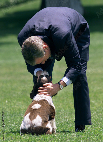Us President George W Bush Pets His Dog At The White House Buy
