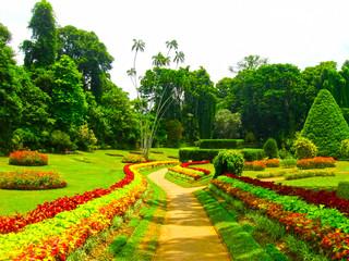 Fototapeta Ogrody Royal Botanical garden Peradeniya. Sri Lanka