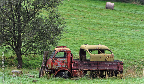 Fototapety, obrazy: Damaged vehicle near the tree