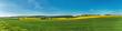 Landschaft mit Rapsfelder, Windräder Panorama