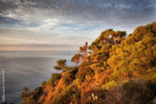 Fototapety, obrazy: Costa Brava Coastline in Spain at Sunrise
