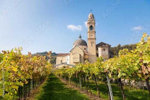 Fotografie, Obraz  Marano di valpolicella,  Italy