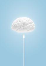 Plug In To Brain
