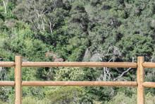 Split Rail Fence Made Of Wood ...