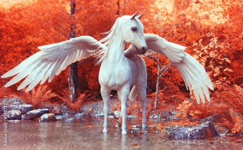 Mythical Pegasus pozowanie w zaczarowanym lesie