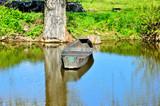 Łódka nad brzegiem rzeki.