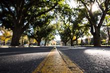 Quiet Campus Street
