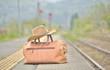 初夏のステーション・鉄道の旅