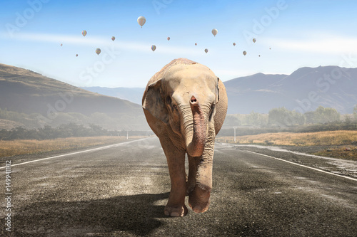Massive elephant as symbol for transportation concept Canvas Print